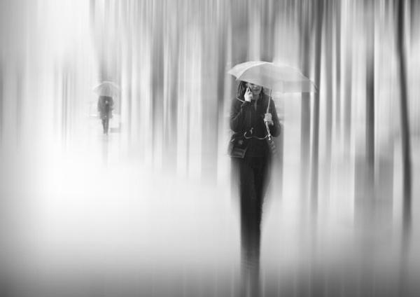 Rain in Spain by tonyng