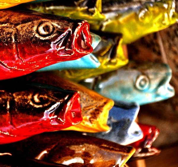 Rather fishy !! by Chinga