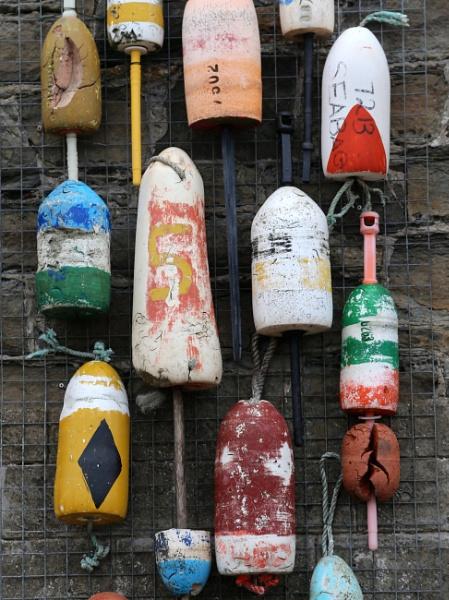 Floats? by shishidog