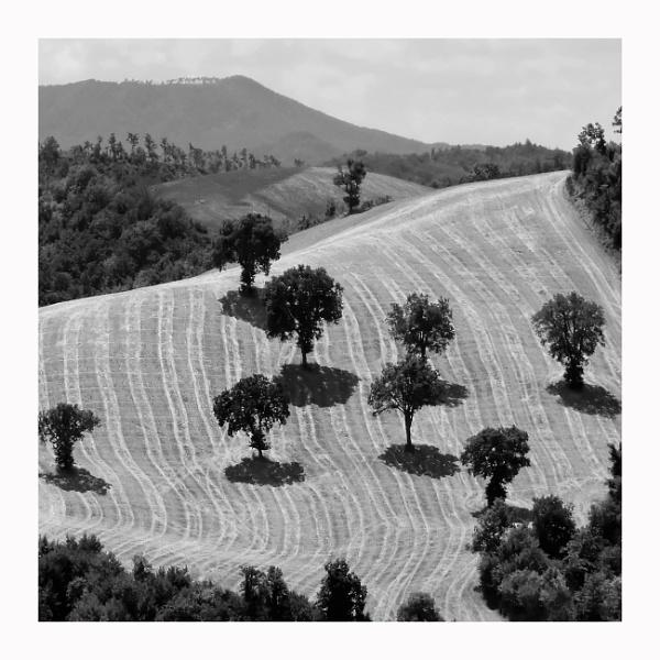 Landscapes of the Marche (incl. V1-V2) by EveLine1