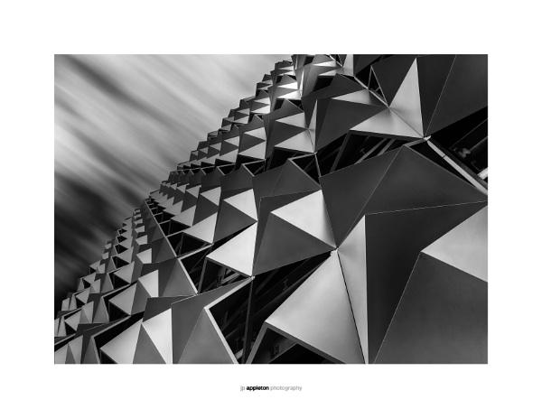 Triangulation by jpappleton