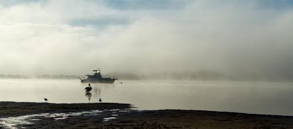 Misty Morning by lesliea