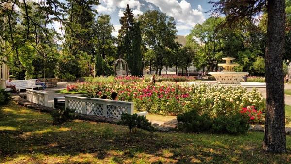 rose garden (see v.1) by leo_nid
