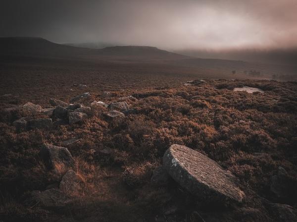 The Dark Moor by JelFish