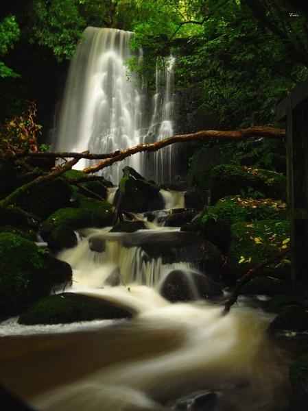 Matai Falls 2 by DevilsAdvocate