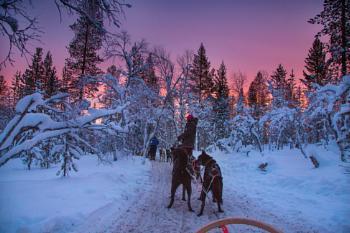 Traffic Jam in Lapland