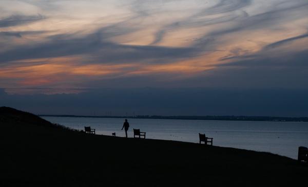 Evening Dog Walk by Aveeno