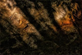 Shadows On Stone