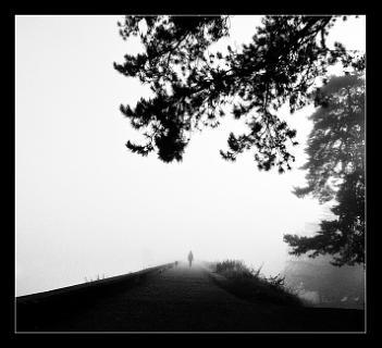 Walk toward the Light.