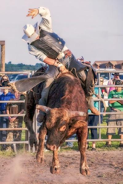 Bull Rider by jbsaladino