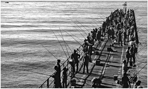 Fishing Pier by mac