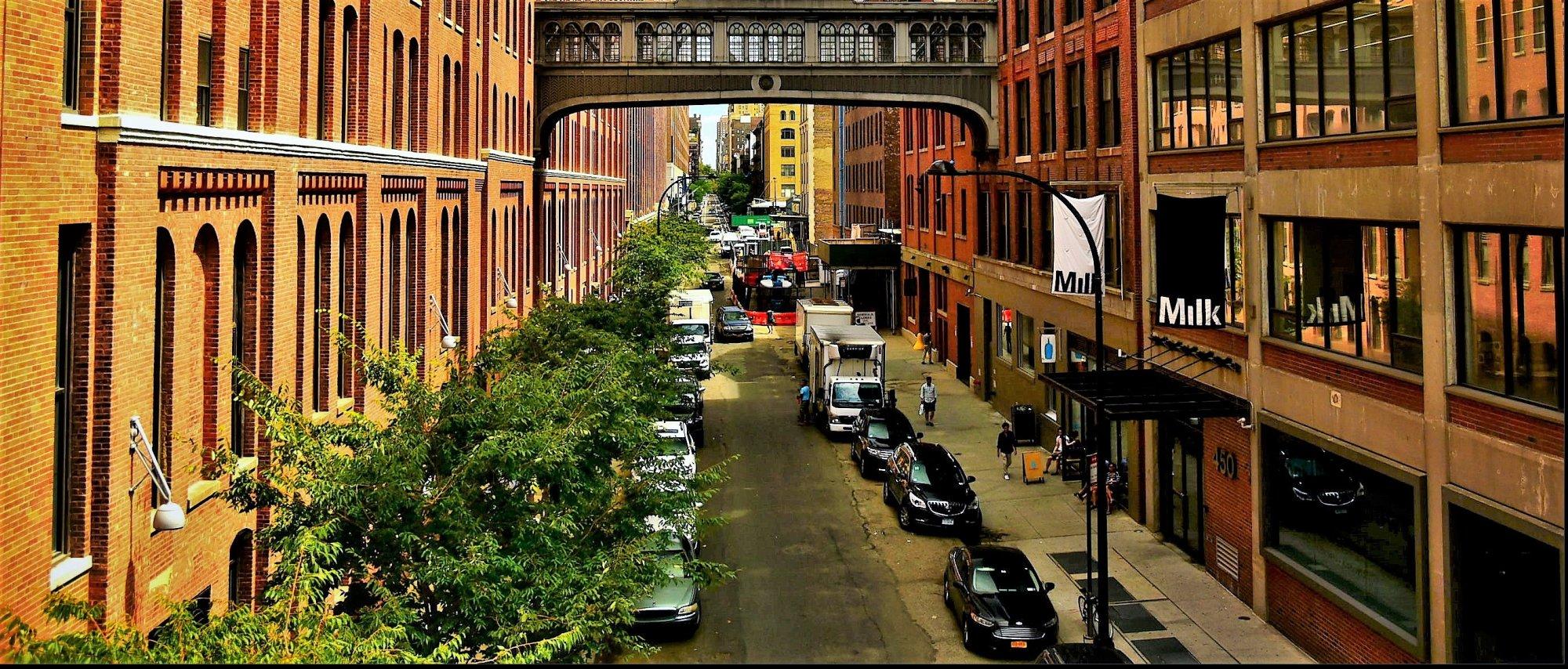 Leafy New York