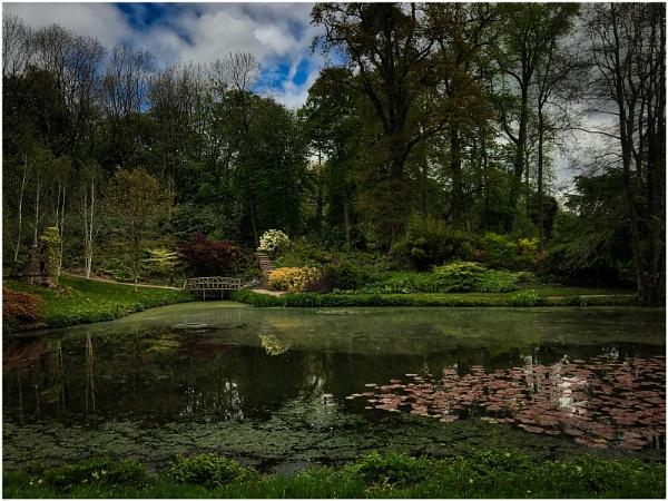 Cholmondeley Castle Gardens by sueriley