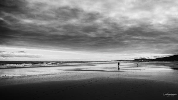Lone dog walker by Ingymon