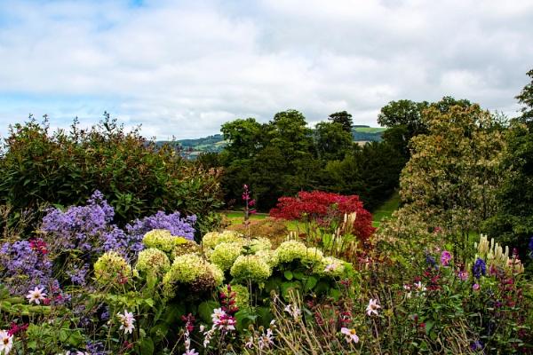 Flora display at Powis Castle by cegidfa