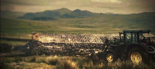 Cumbria farm life by Natz88895
