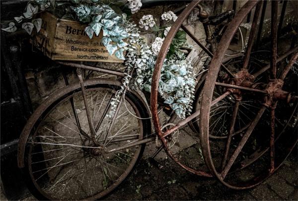 Barney #2:  Wheels by KingBee
