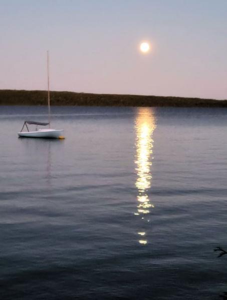 Moon on Schoodic by Joline