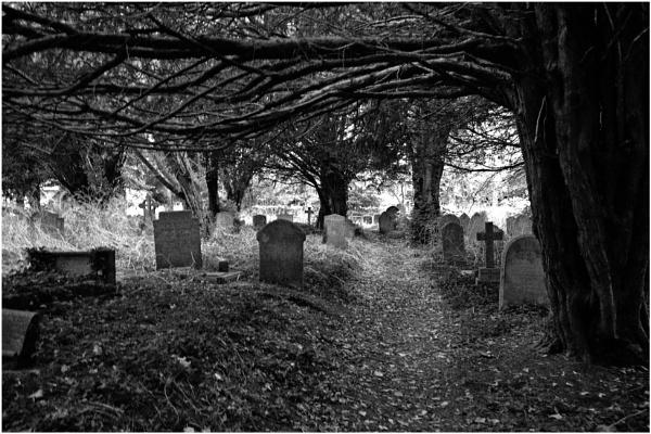 "\"" Local Church Yard \"" by badgerwil70"