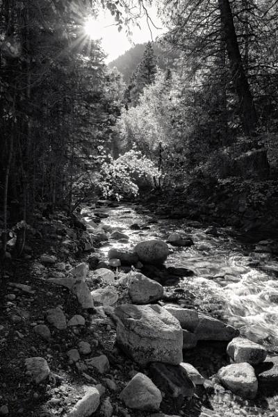 Stream in Autumn by mlseawell