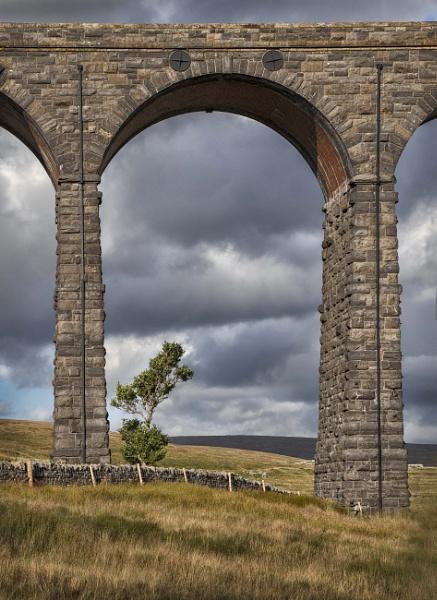 On the Yorkshire Moors by HelenaJ