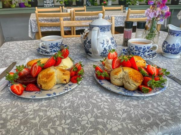 Cornish Strawberry Cream Tea for 2 by martin174