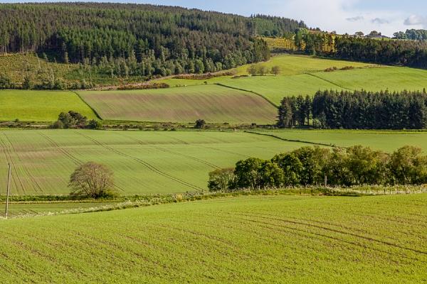 Arable landscape near Drumderfit by Phil_Bird