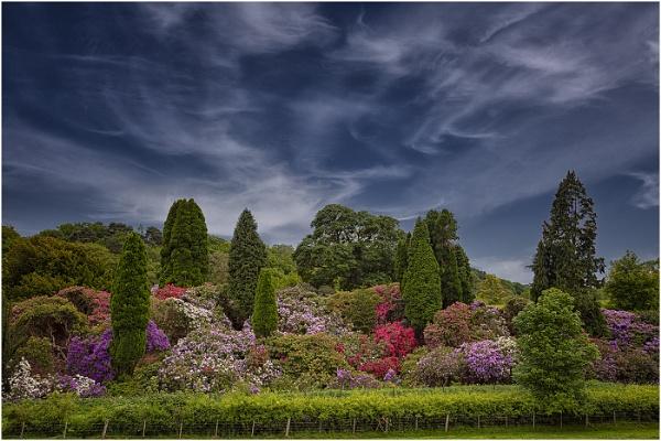 Belsay Hall Gardens by stevenb