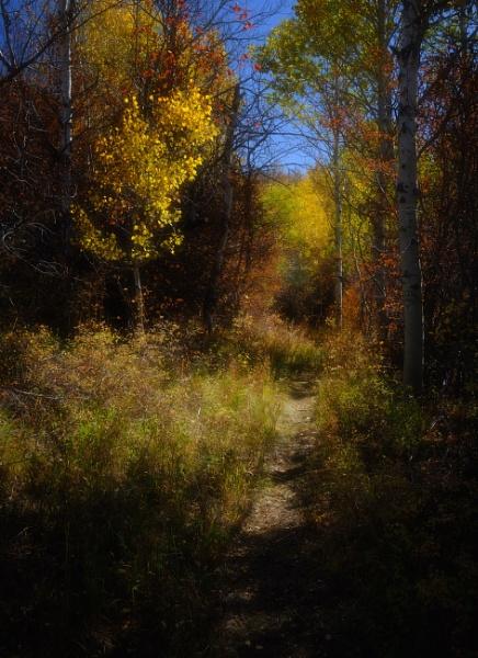 Monet in Autumn by mlseawell