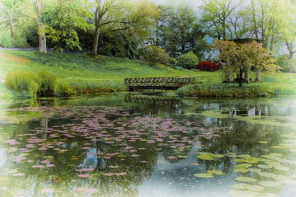 Cholmondeley Water by sueriley
