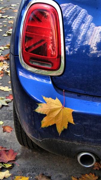 autumn motif #3 * by leo_nid