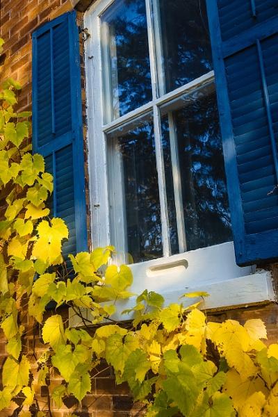 Enjoy Autumn by manicam