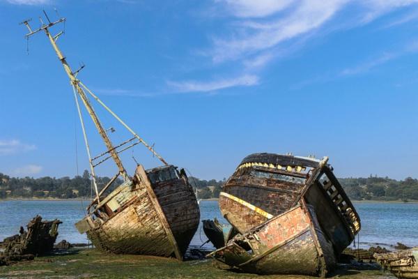 Beautiful Wrecks by tabby