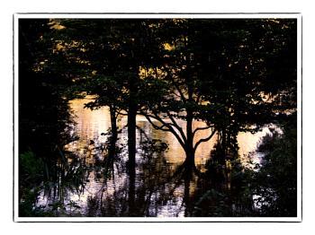 Morning. Lake