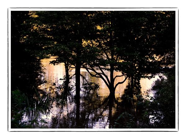 Morning. Lake by taggart