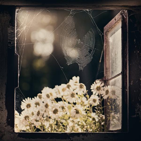 Autumn memories by KristinaZvinakeviciute