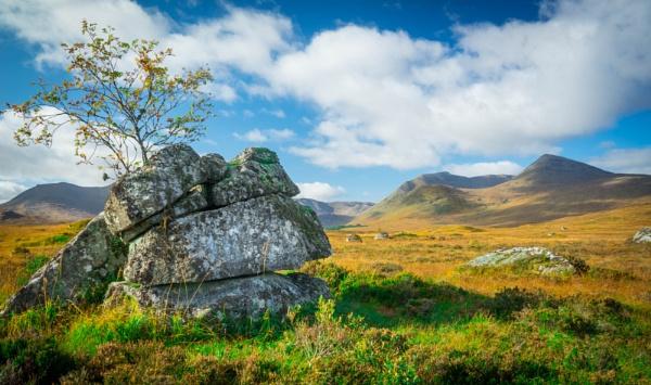 Rocks on the Moor by Billdad