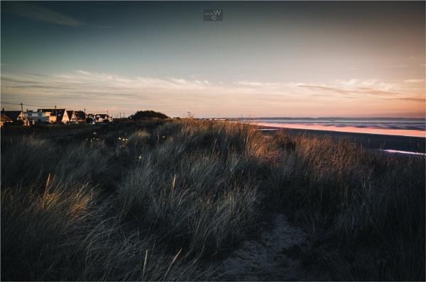 Morning light... by ziggystardust111
