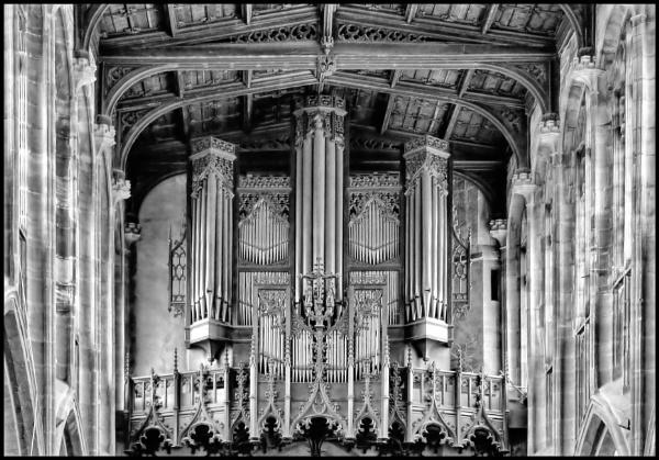 A Mighty Organ. by rfhfoto
