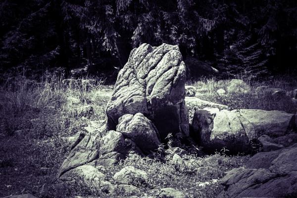 Rocks on a grass field by rninov