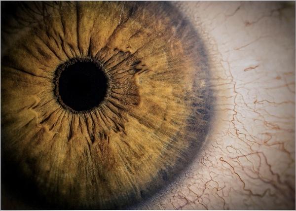 My Eye by Carlos9