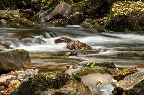 River Neath by nigell