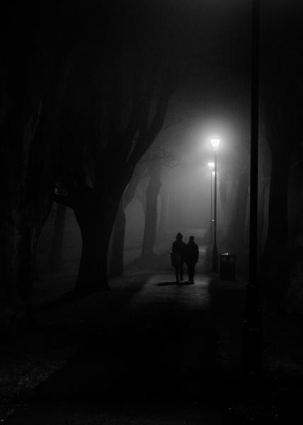 A Misty Morning Stroll by 2479