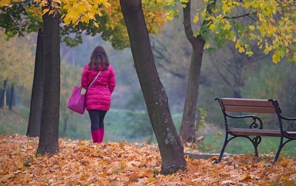 Lost in autumn by LaoCe