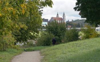 The last autumn greenery