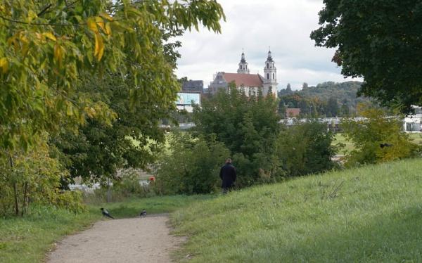 The last autumn greenery by SauliusR