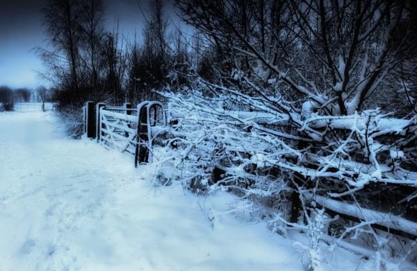 Snow Gates by chris-p