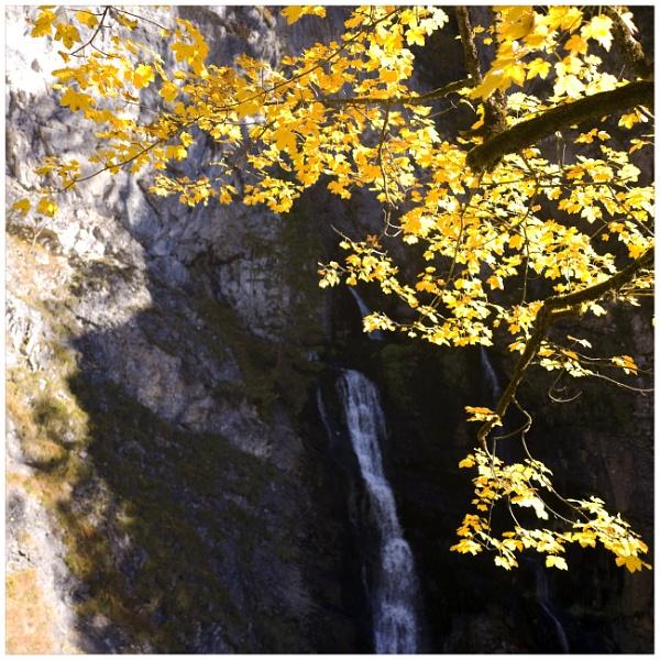 (water)fall by bliba