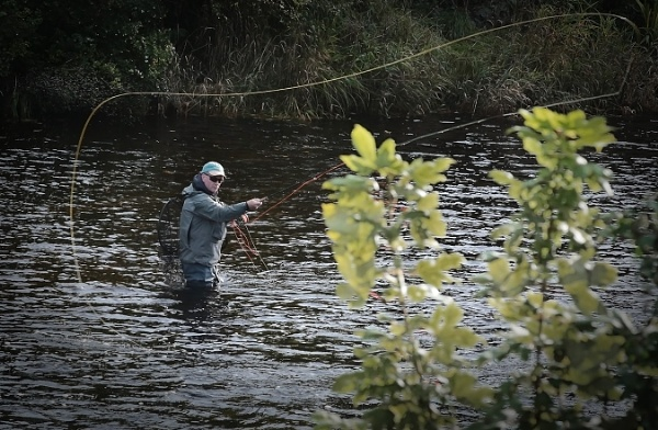 River Cree, on the Fly. by mex