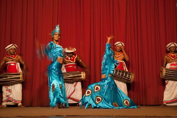 peacock-dance--1-of-1-.jpg